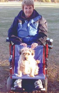 Dog seat fitted to a wheelchair