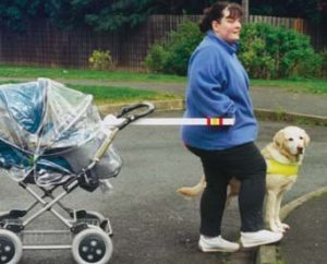 Pushchair towing device