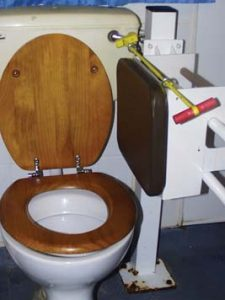 Supportive toilet seat