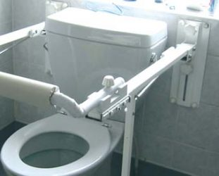 Toilet support bar