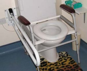 Transportable padded toilet seat