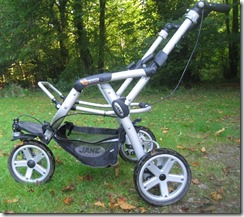 Unmodified buggy frame